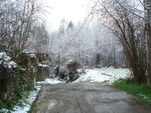 neige en Béarn le 26-02-2013 007
