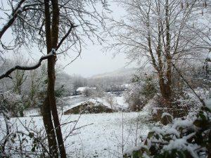 neige en Béarn le 26-02-2013 010